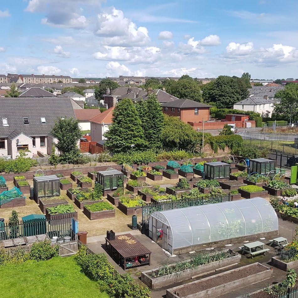 Shettleston Community Growing Project